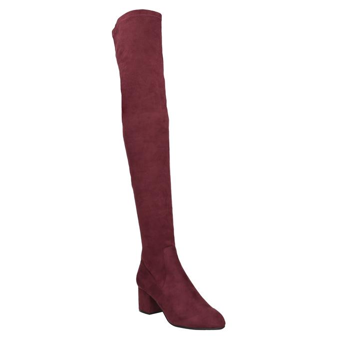 Dámské kozačky nad kolena vínové steve-madden, červená, 719-5024 - 13